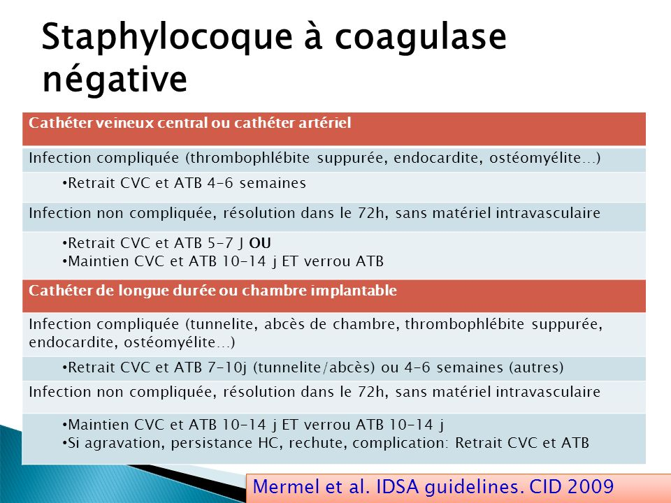 Staphylocoque à coagulase négative