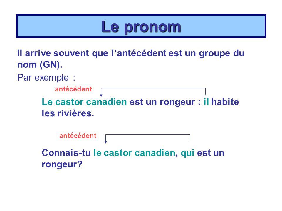 Le pronom Il arrive souvent que l'antécédent est un groupe du nom (GN). Par exemple : antécédent.