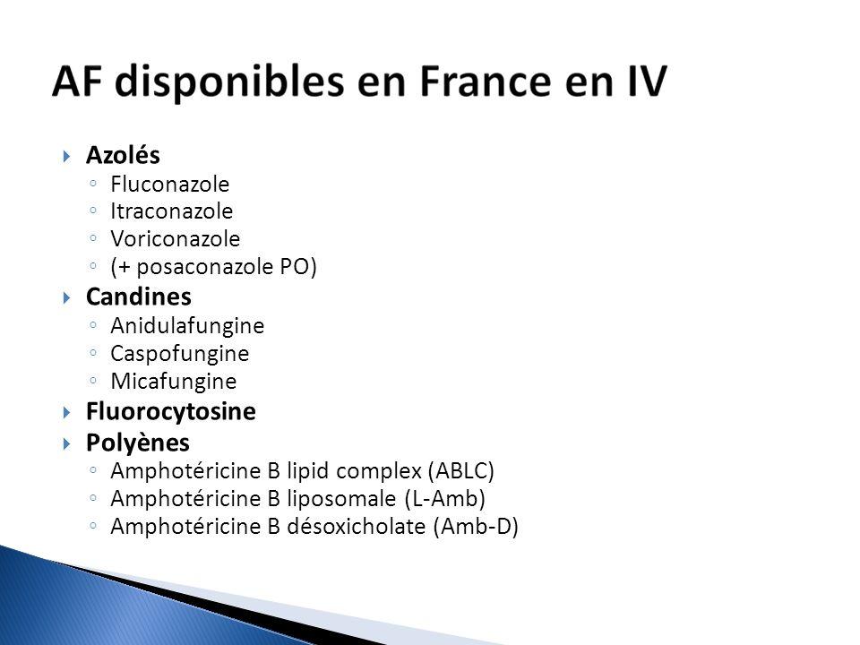 Azolés Candines Fluorocytosine Polyènes Fluconazole Itraconazole