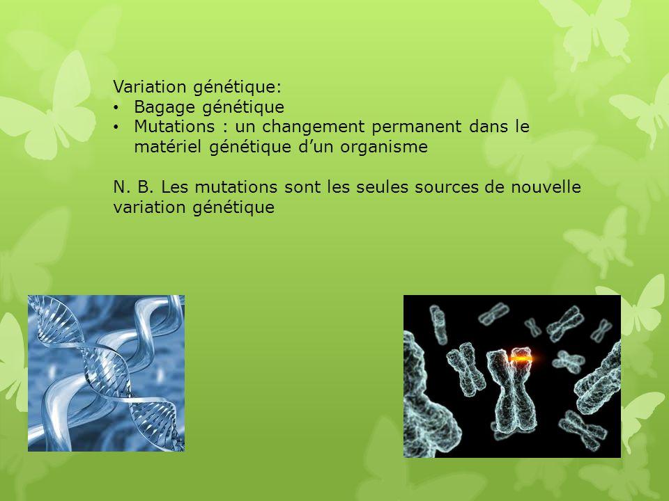 Variation génétique: Bagage génétique. Mutations : un changement permanent dans le matériel génétique d'un organisme.