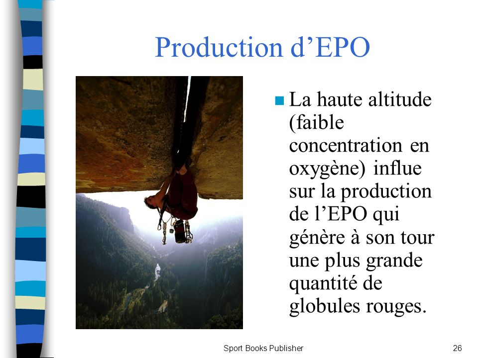 Production d'EPO