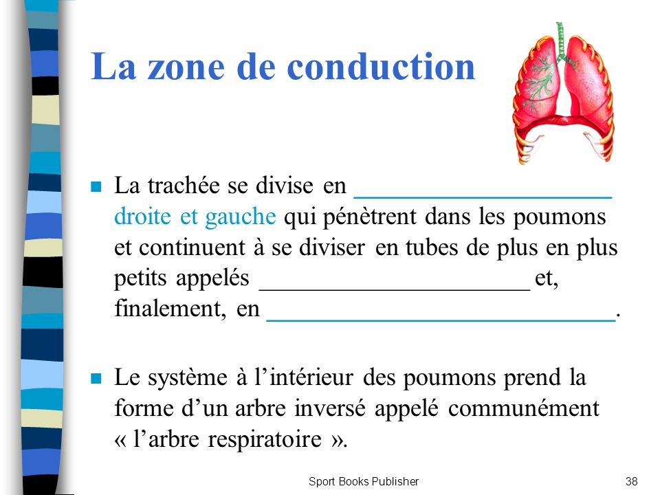 La zone de conduction