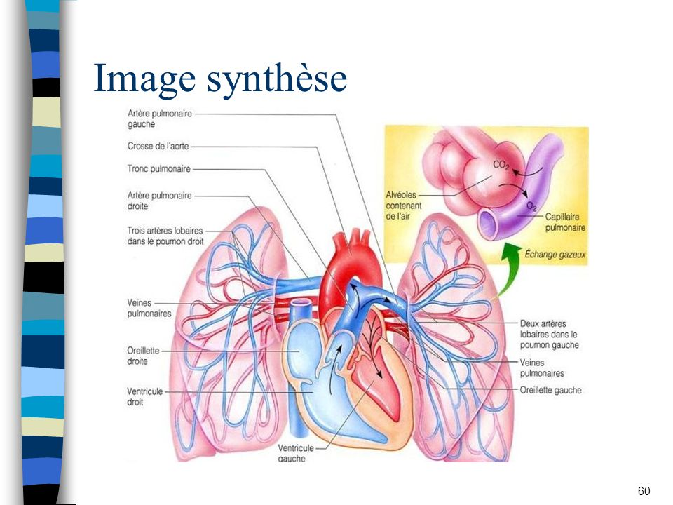 Image synthèse