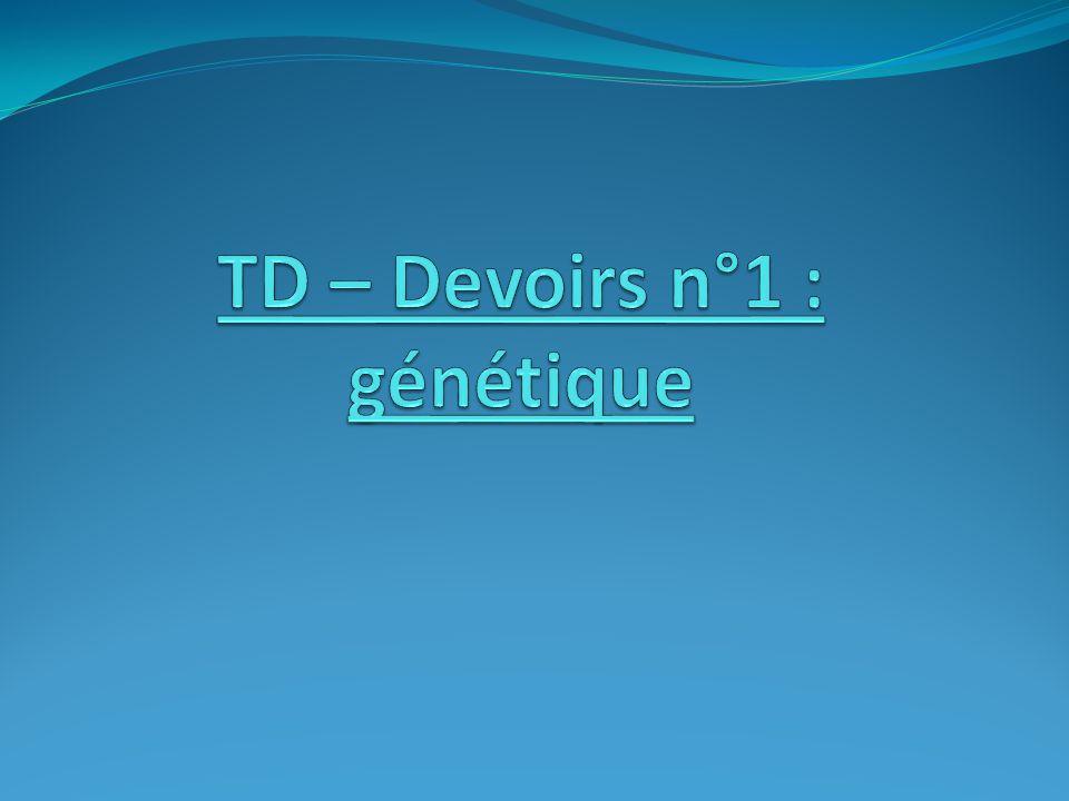 TD – Devoirs n°1 : génétique