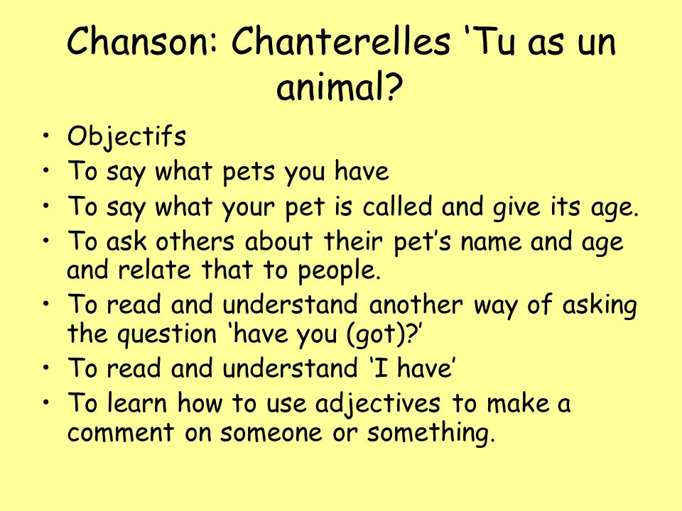 Chanson: Chanterelles 'Tu as un animal
