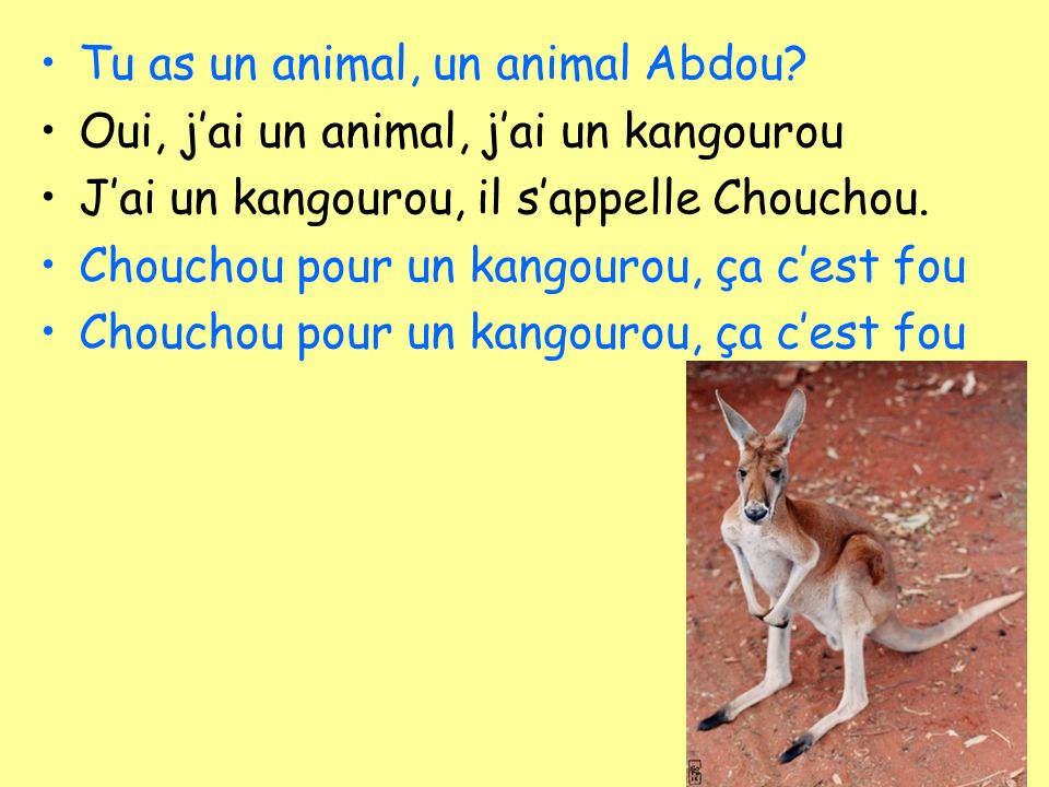 Tu as un animal, un animal Abdou