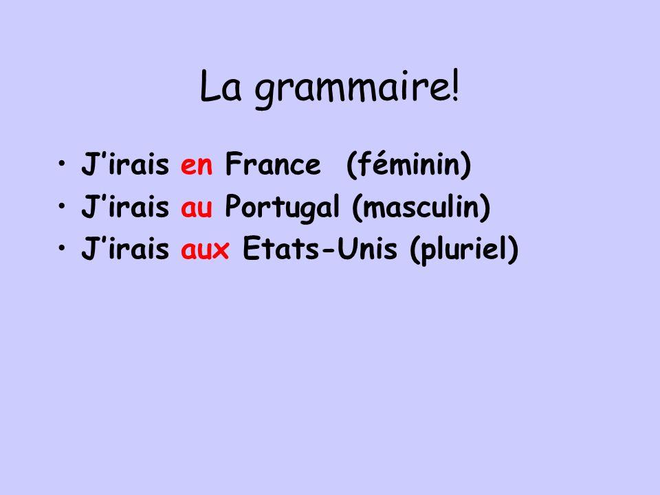 La grammaire! J'irais en France (féminin)