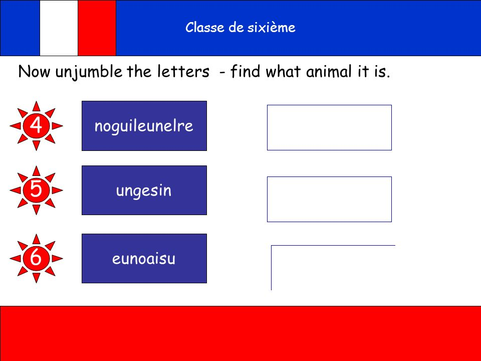 A toi 4 5 6 Now unjumble the letters - find what animal it is.