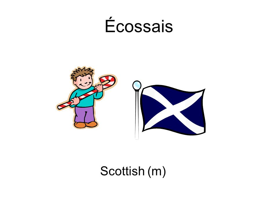 Écossais Scottish (m)