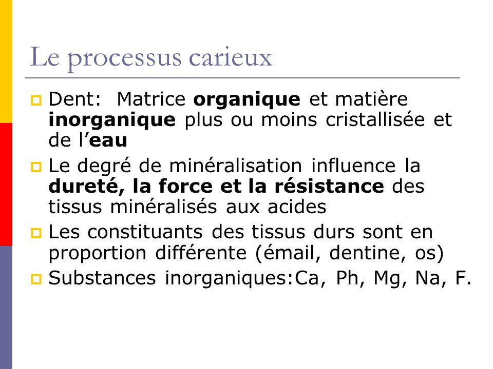 Le processus carieux Dent: Matrice organique et matière inorganique plus ou moins cristallisée et de l'eau.