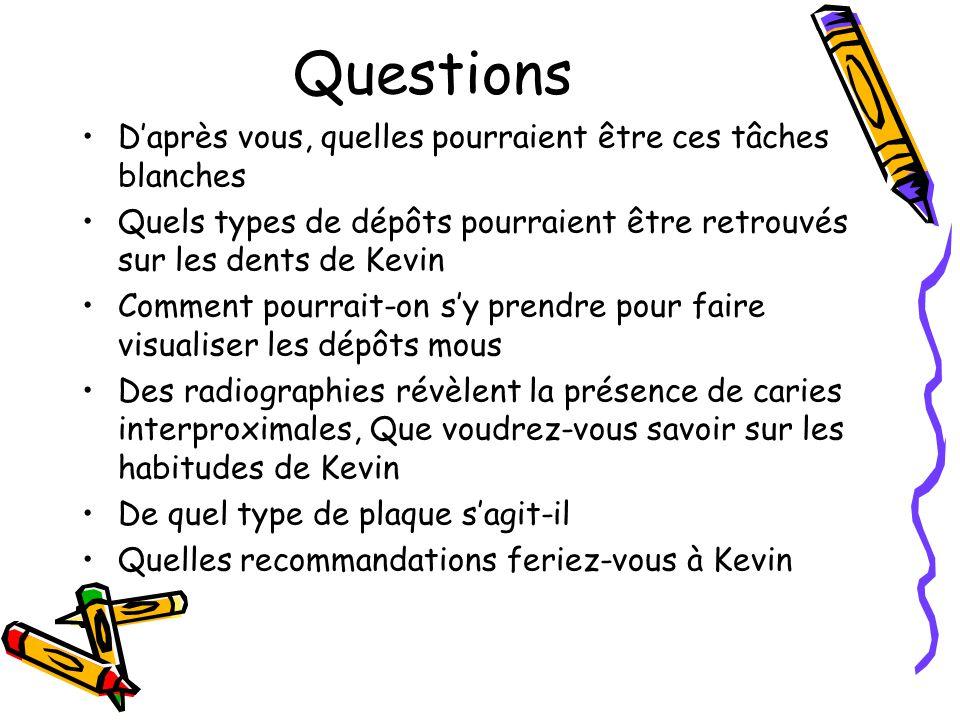 Questions D'après vous, quelles pourraient être ces tâches blanches