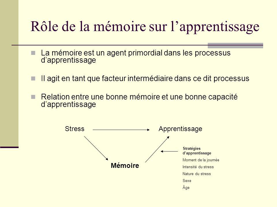 Rôle de la mémoire sur l'apprentissage