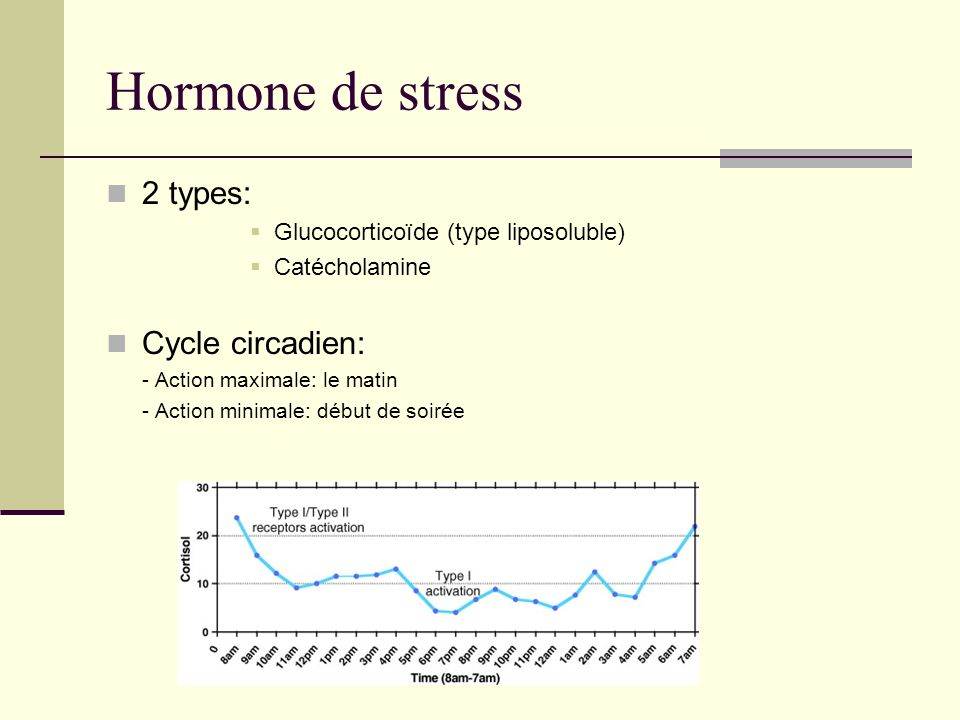 Hormone de stress 2 types: Cycle circadien: