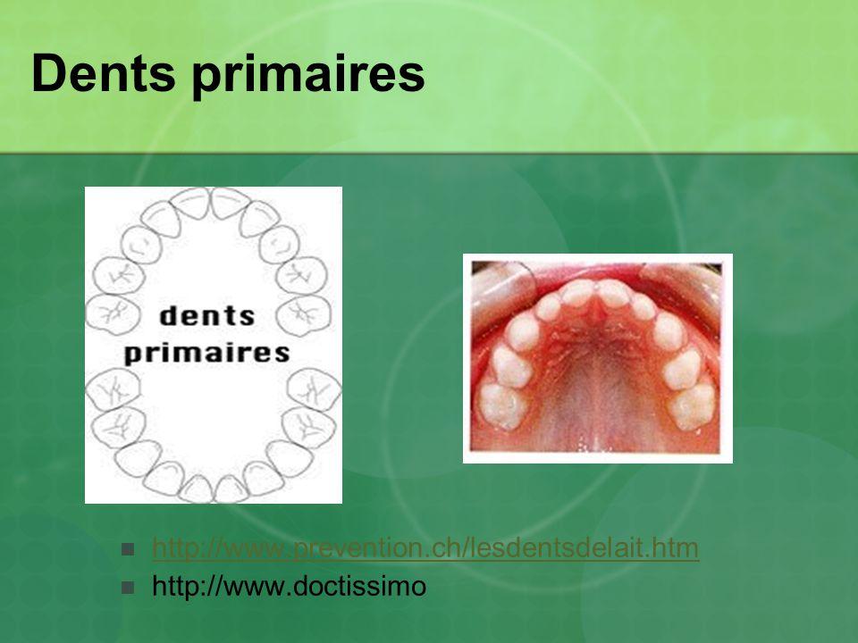 Dents primaires http://www.prevention.ch/lesdentsdelait.htm