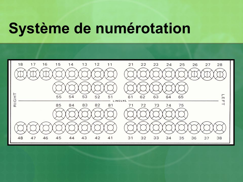 Système de numérotation