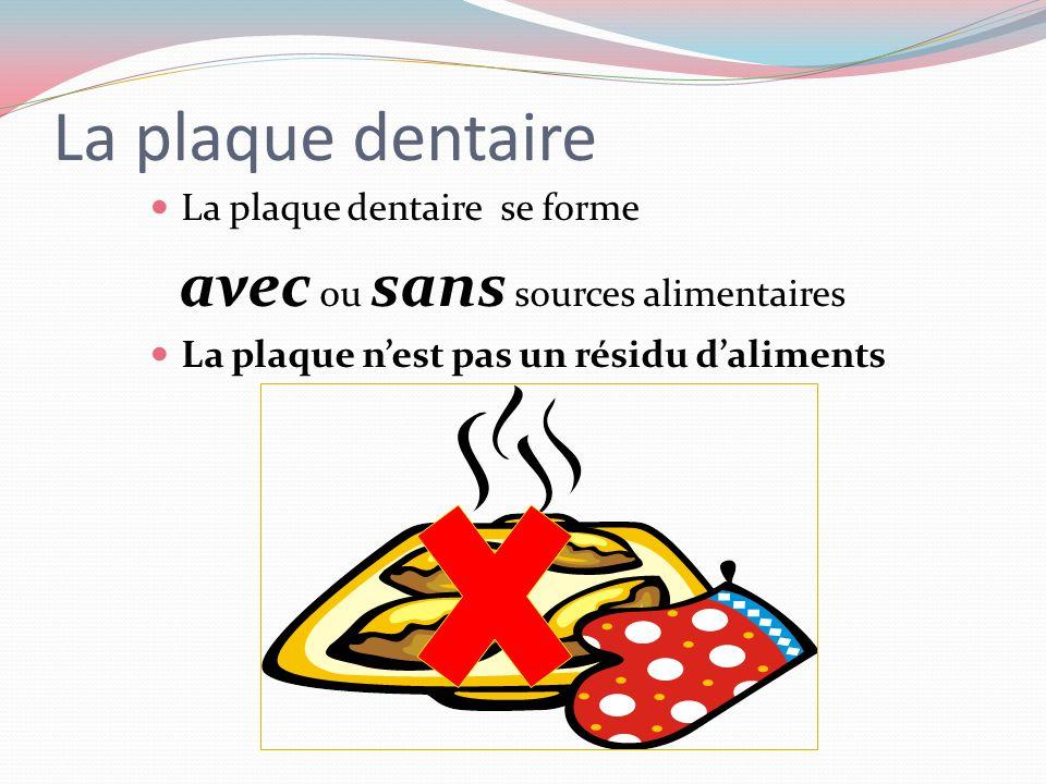 La plaque dentaire avec ou sans sources alimentaires