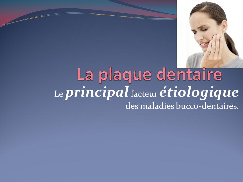 Le principal facteur étiologique des maladies bucco-dentaires.