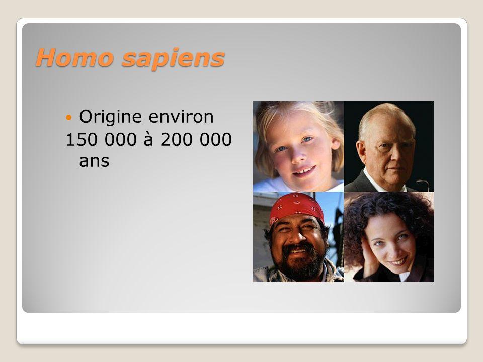 Homo sapiens Origine environ 150 000 à 200 000 ans