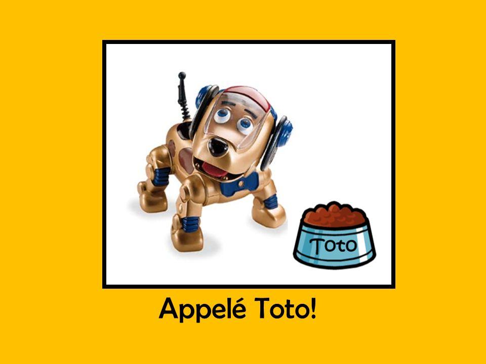 Appelé Toto!