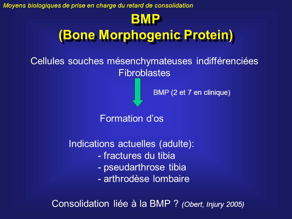 (Bone Morphogenic Protein)