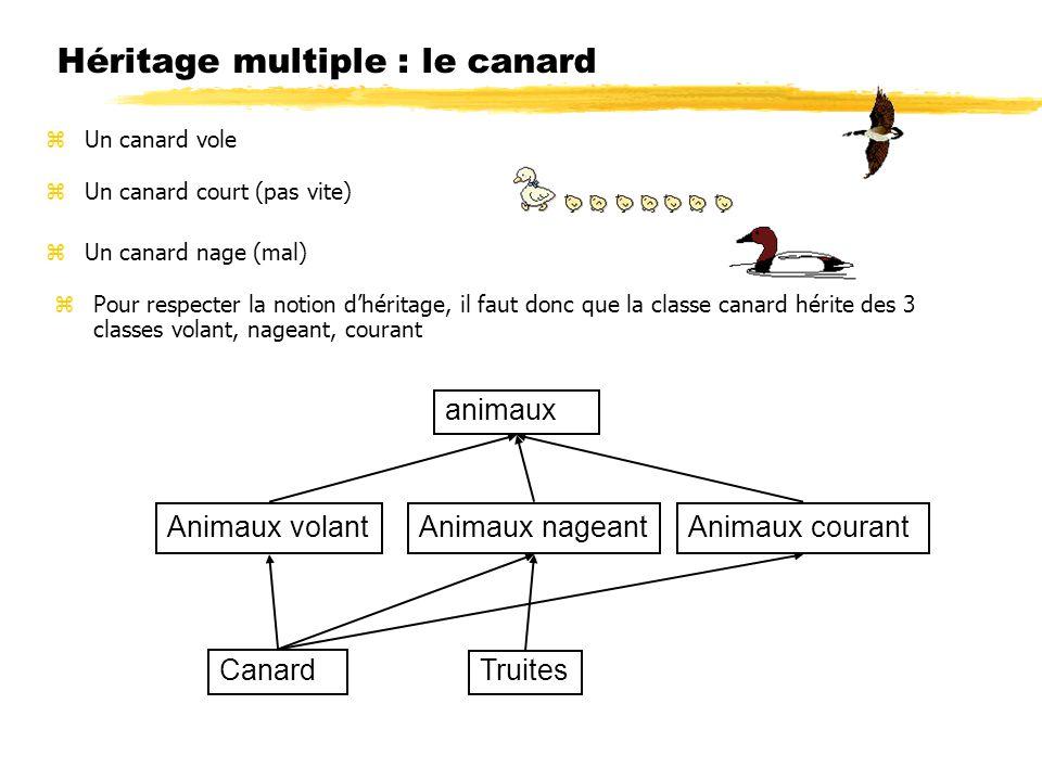 Héritage multiple : le canard
