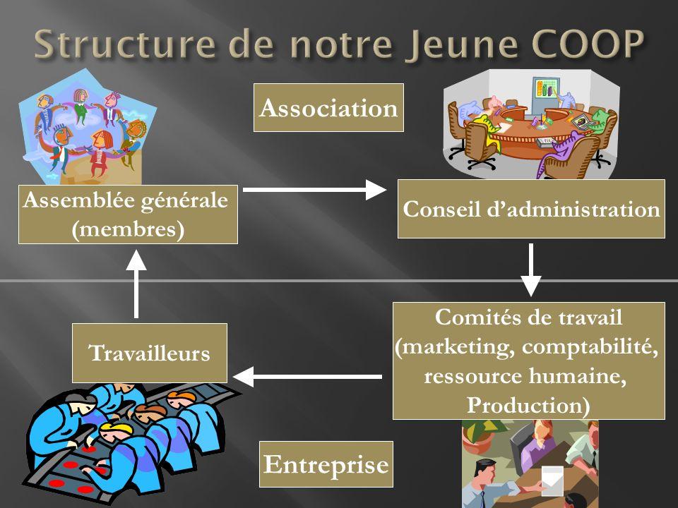 Structure de notre Jeune COOP