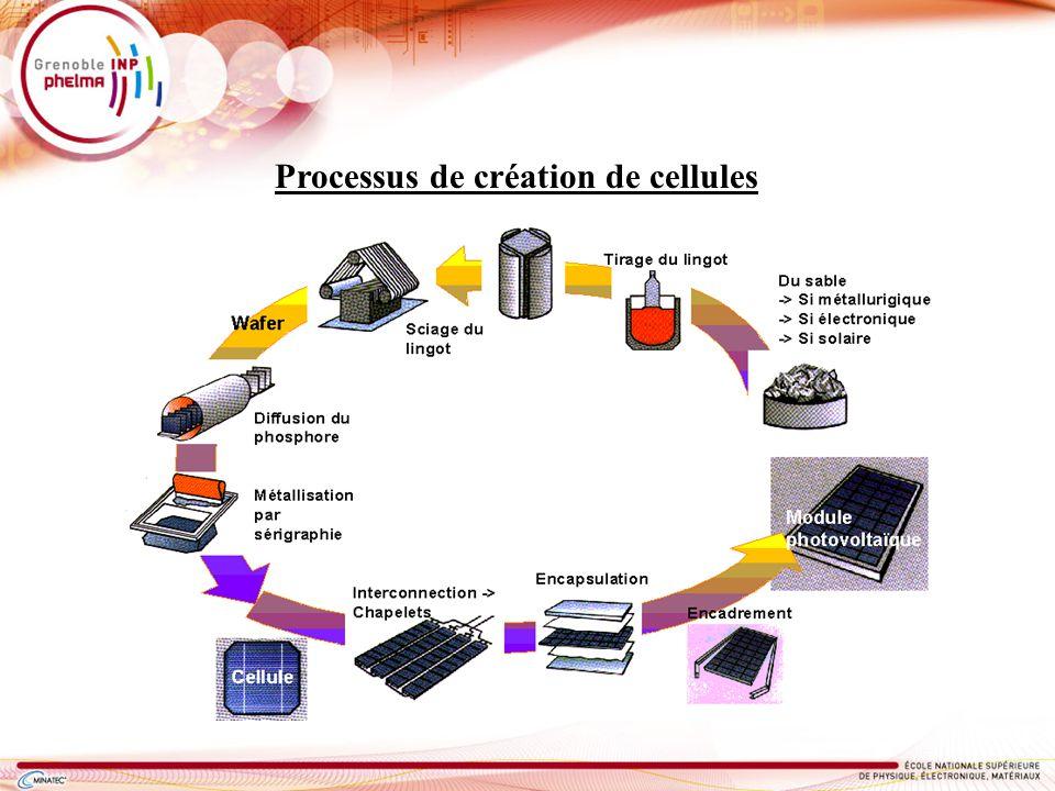 Processus de création de cellules