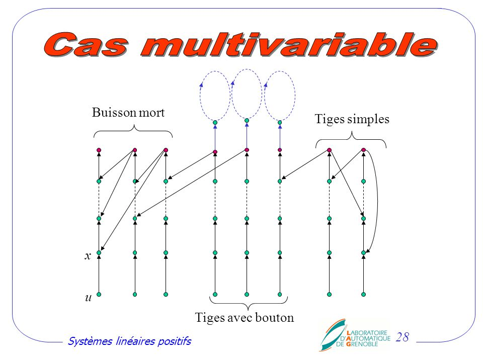 Cas multivariable Buisson mort Tiges simples x u Tiges avec bouton