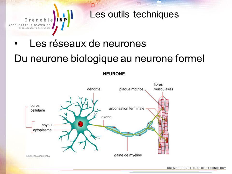 Les réseaux de neurones Du neurone biologique au neurone formel