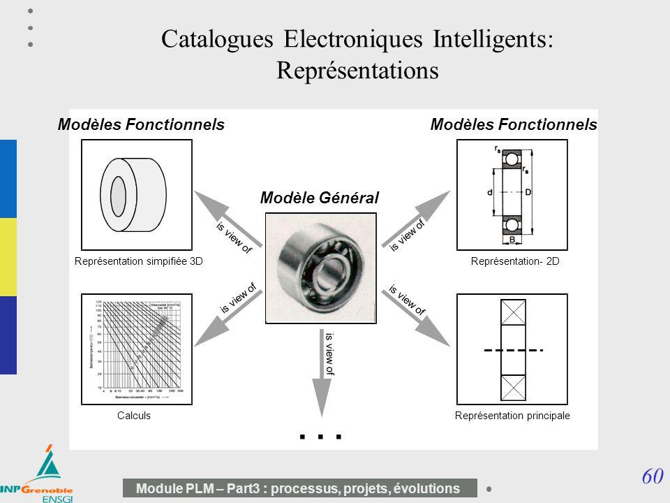 Catalogues Electroniques Intelligents: Représentations