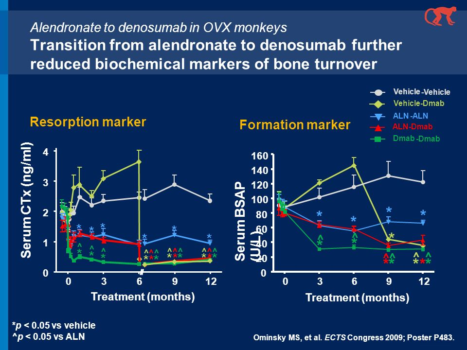 Alendronate to denosumab in OVX monkeys Transition from alendronate to denosumab further reduced biochemical markers of bone turnover