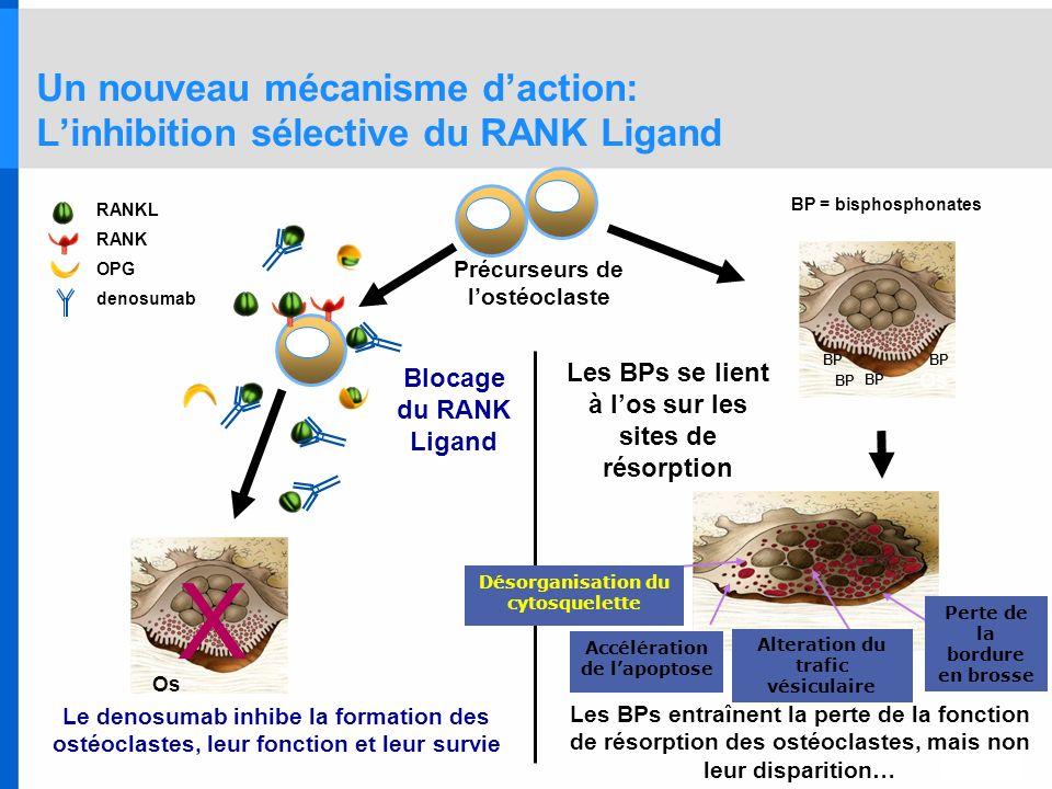 Un nouveau mécanisme d'action: L'inhibition sélective du RANK Ligand