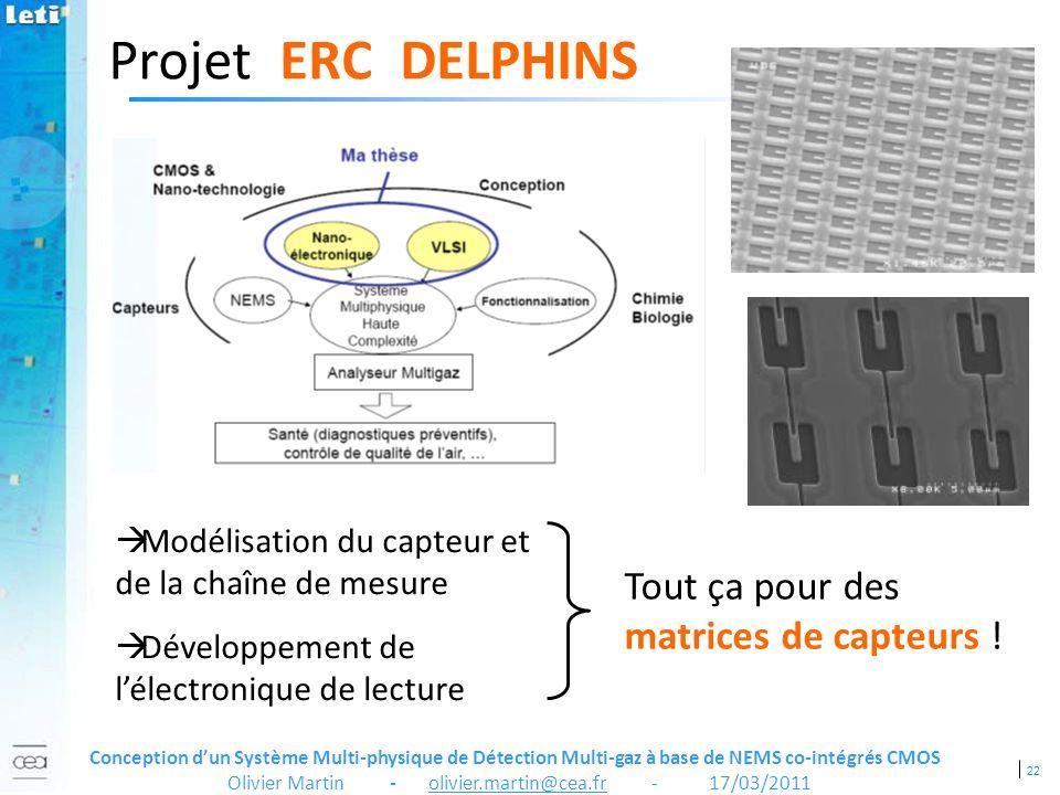 Projet ERC DELPHINS Tout ça pour des matrices de capteurs !