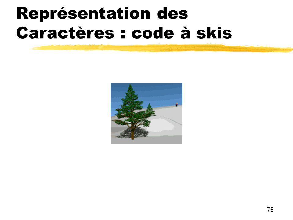 Représentation des Caractères : code à skis