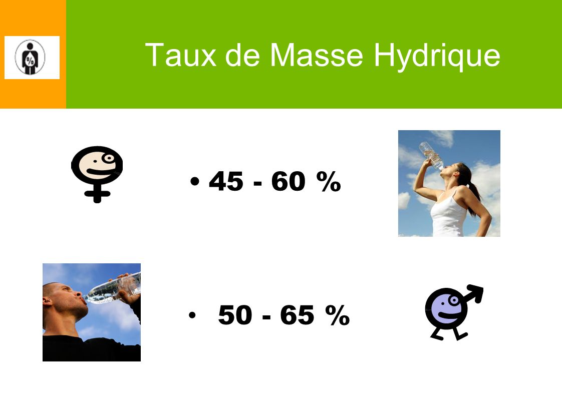 Taux de Masse Hydrique 45 - 60 % 50 - 65 %