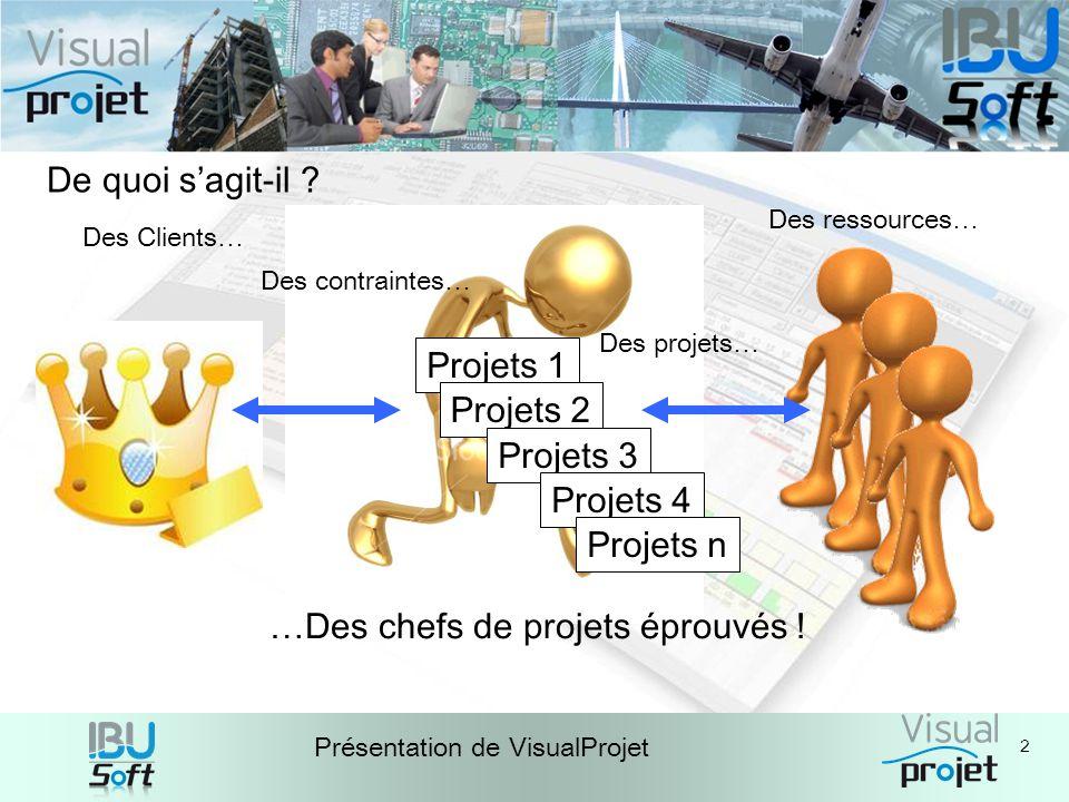 …Des chefs de projets éprouvés ! Projets 1 Projets 2 Projets 3