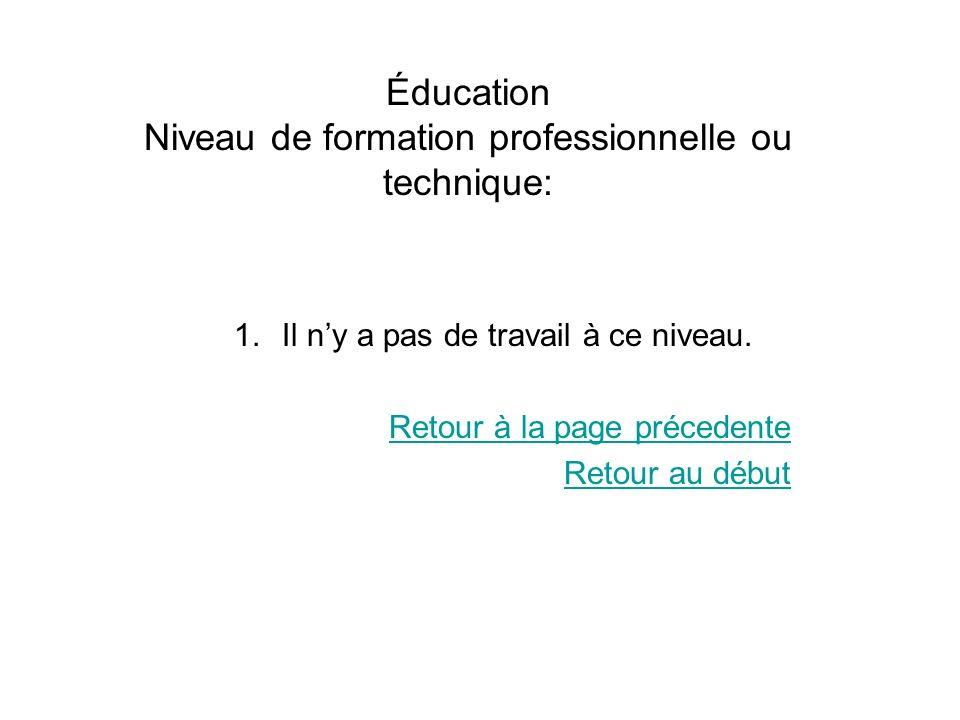 Éducation Niveau de formation professionnelle ou technique: