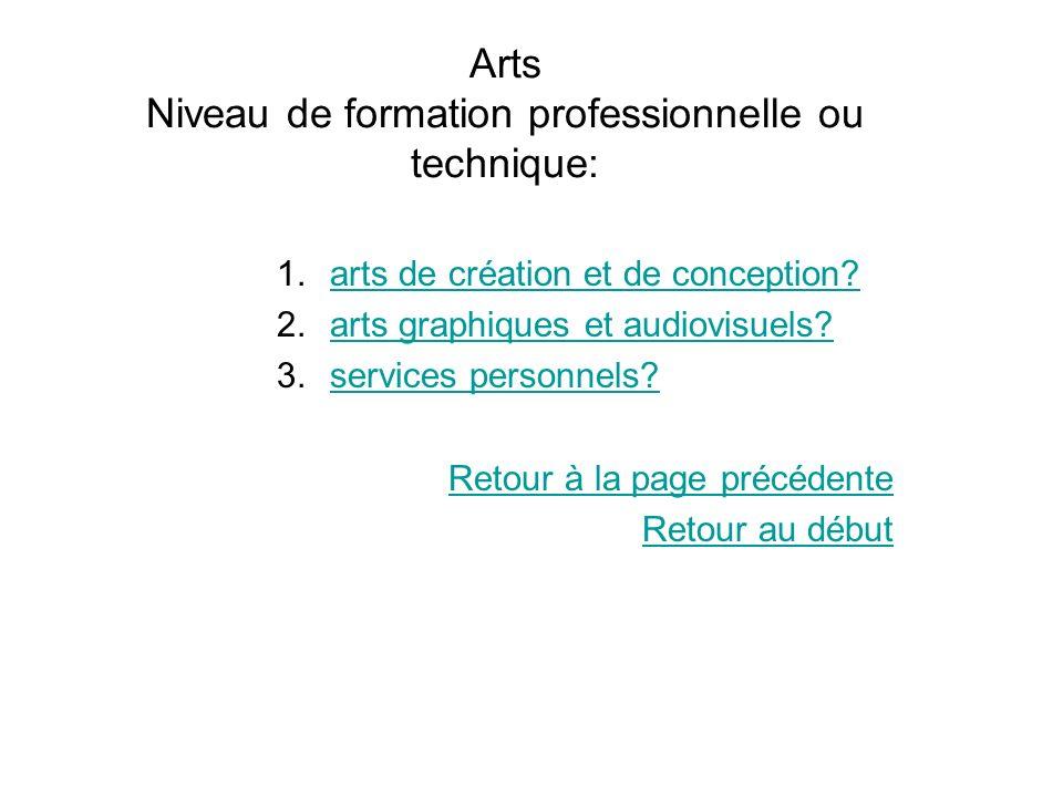Arts Niveau de formation professionnelle ou technique: