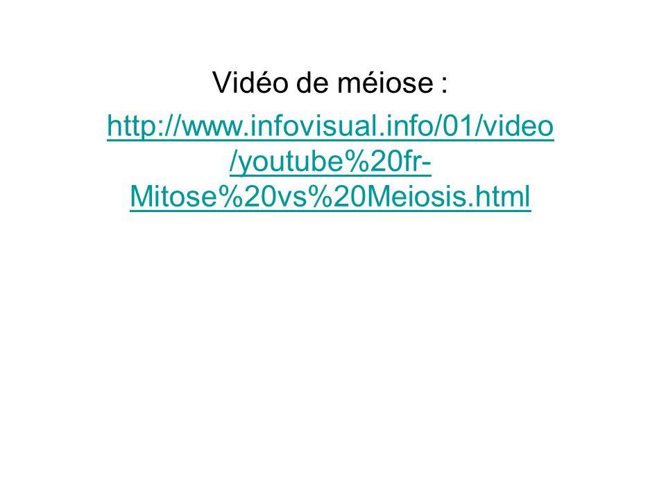 Vidéo de méiose : http://www.infovisual.info/01/video/youtube%20fr-Mitose%20vs%20Meiosis.html