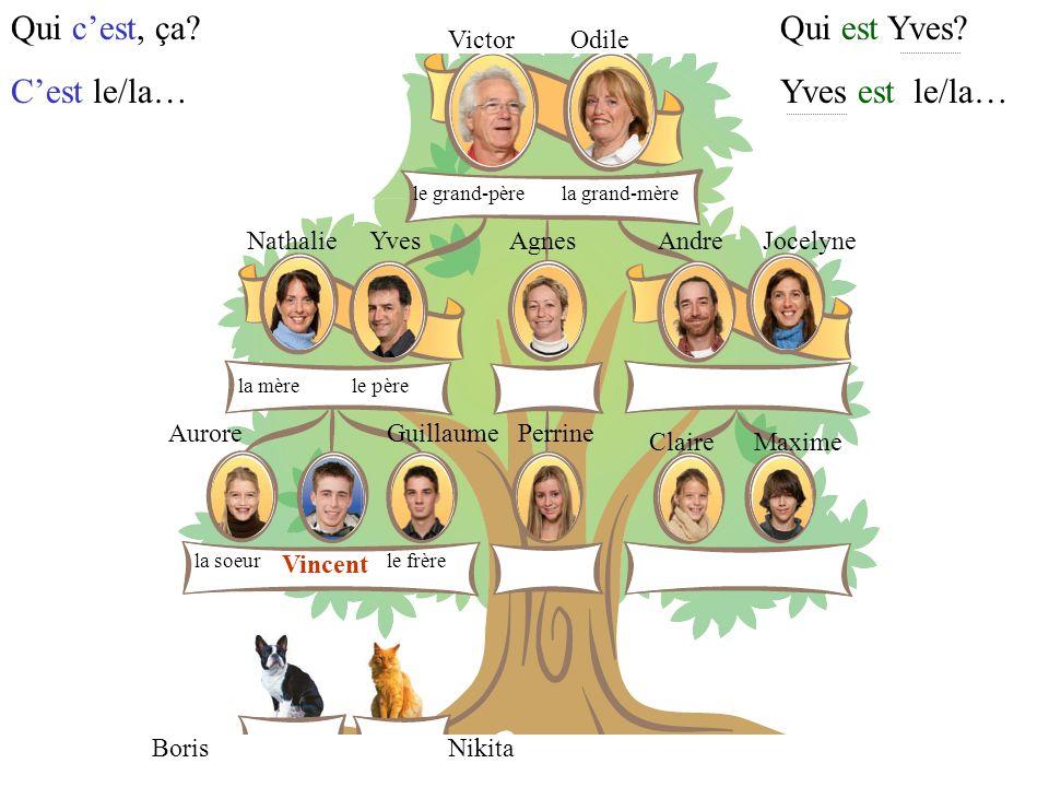 Qui c'est, ça C'est le/la… Qui est Yves Yves est le/la… Victor Odile