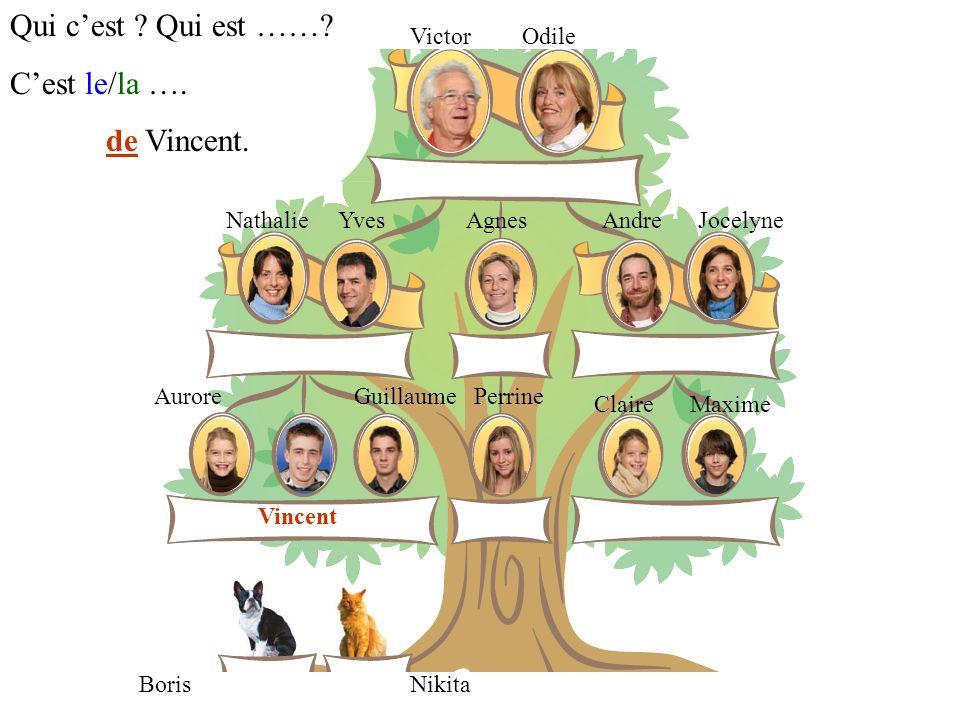 Qui c'est Qui est …… C'est le/la …. de Vincent. Victor Odile