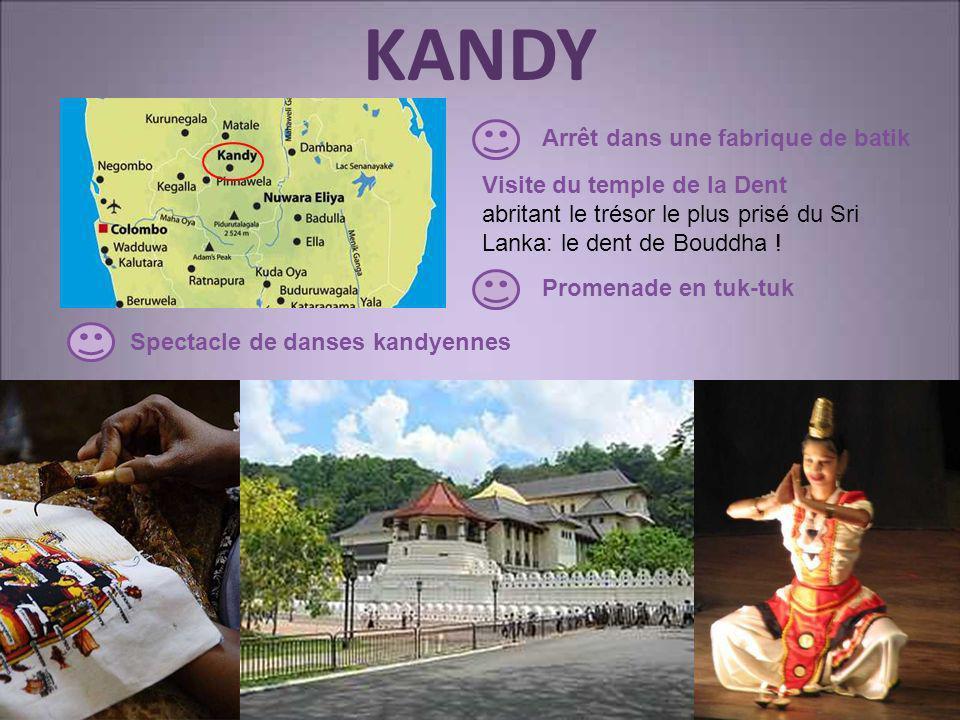 KANDY Arrêt dans une fabrique de batik Visite du temple de la Dent
