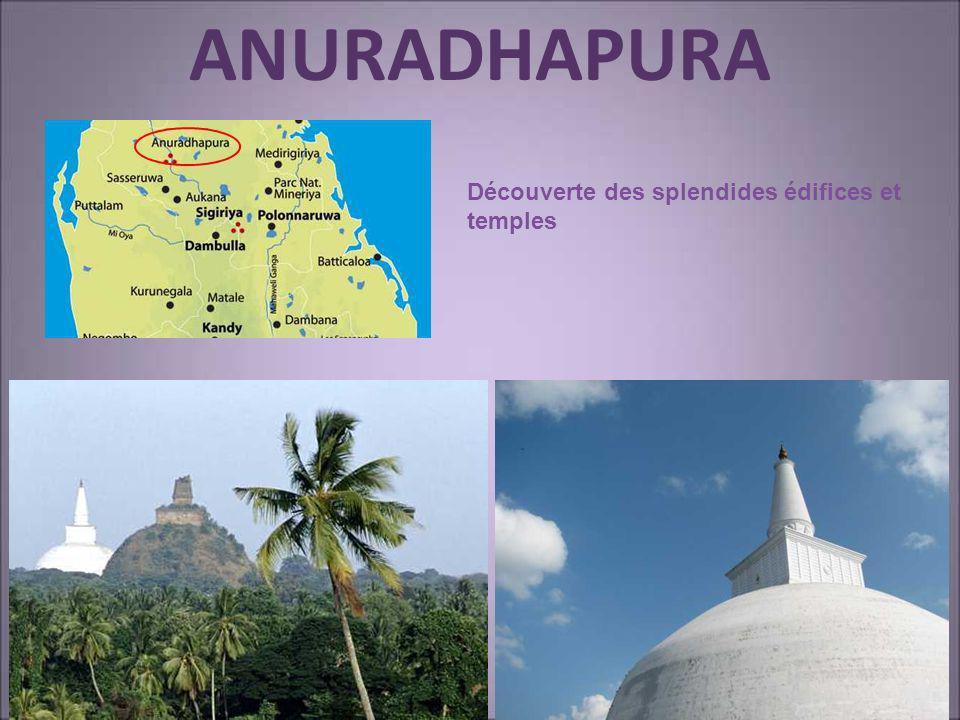 ANURADHAPURA Découverte des splendides édifices et temples