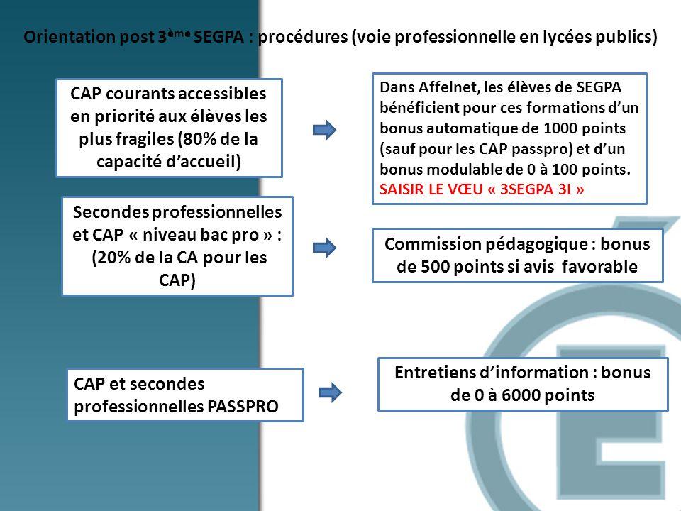 Secondes professionnelles et CAP « niveau bac pro » :