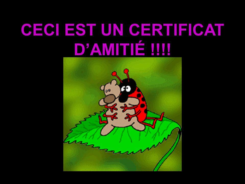 CECI EST UN CERTIFICAT D'AMITIÉ !!!!