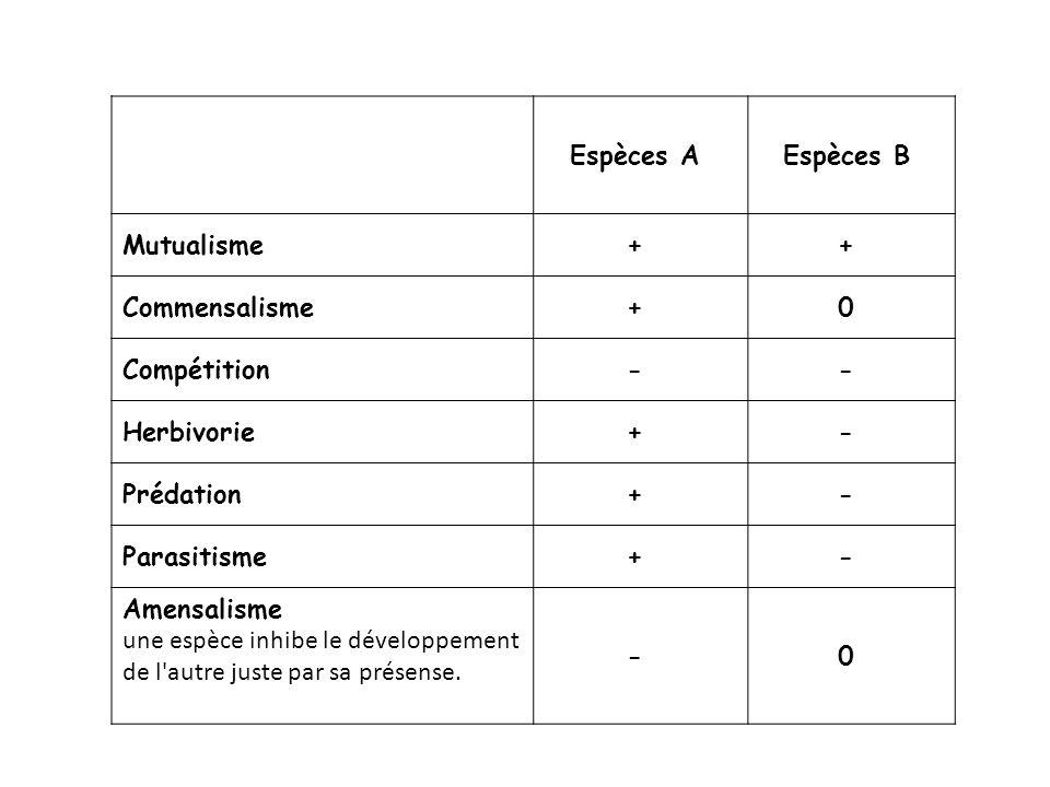 Espèces A Espèces B Mutualisme. + Commensalisme. 0 Compétition. - Herbivorie. Prédation.