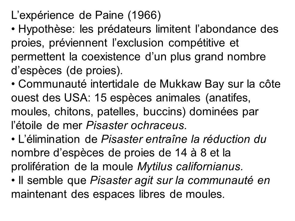 L'expérience de Paine (1966)