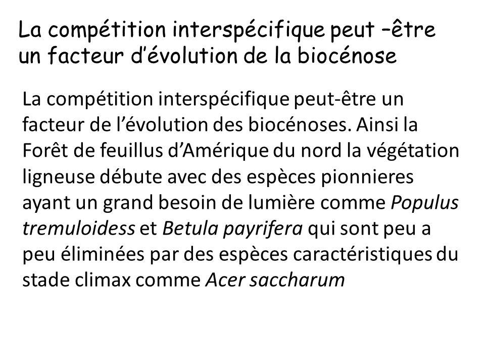 La compétition interspécifique peut –être un facteur d'évolution de la biocénose