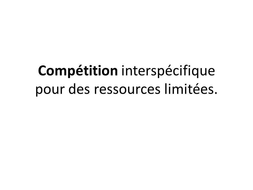Compétition interspécifique pour des ressources limitées.