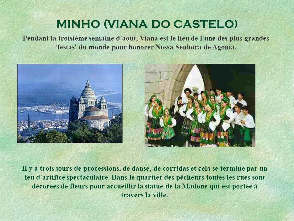 MINHO (VIANA DO CASTELO)